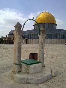 ذكرٌ جميل لأيامٍ في القدس والخليل (13)