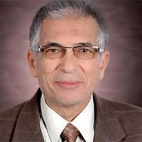 عبد الحليم عويس.. وداعًا